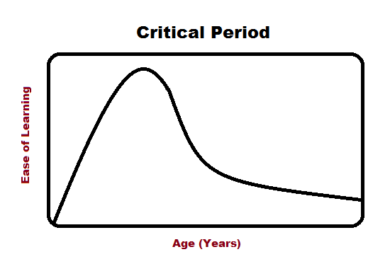 critical period hypothesis Reviews relevant research findings and considers various proposed explanations of age-related differences in (second) language acquisition the authors argue that, despite a number of unresolved problems and even some apparent counterevidence, the critical period concept, as it has evolved, continues to have.