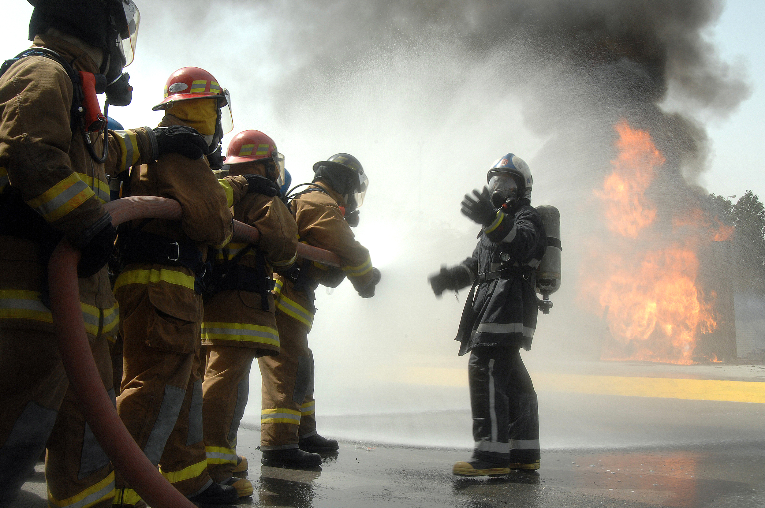 history of the fire service essay