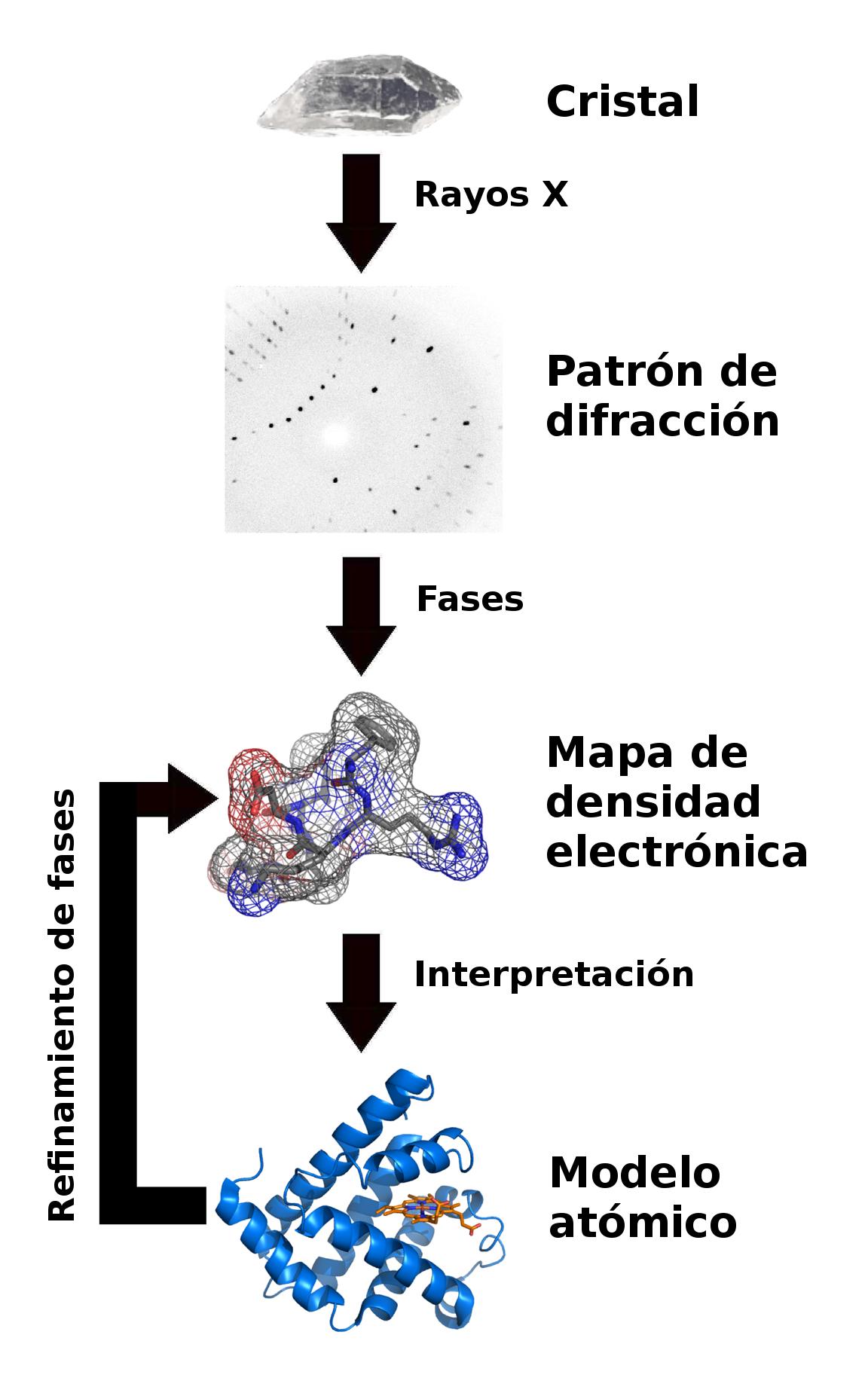 Cristalografía de rayos X - Wikipedia, la enciclopedia libre