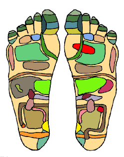Fitxer:Foot Chart1 small.png