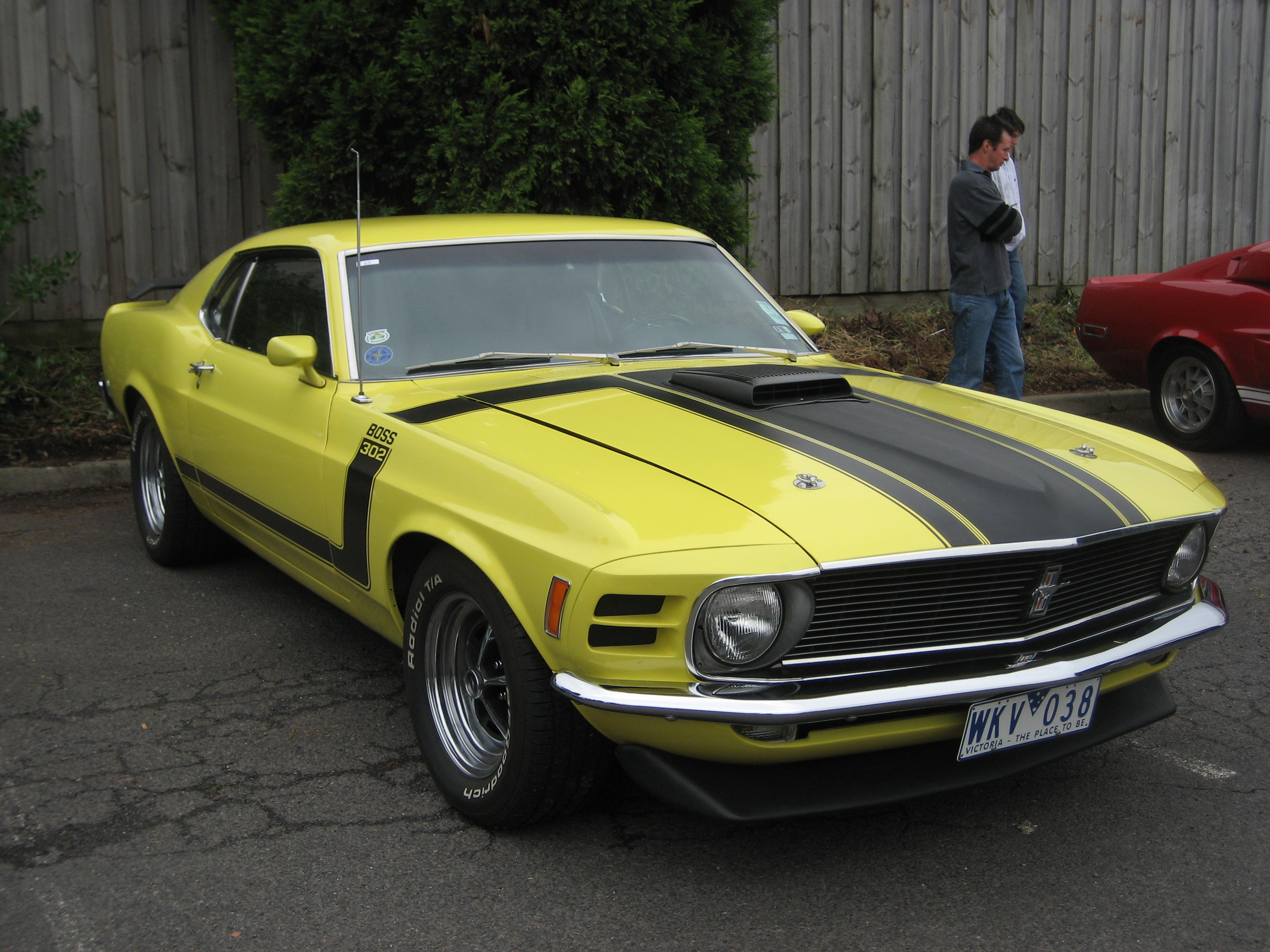 File Ford Mustang Boss 302 1970 Jpg Wikimedia Commons