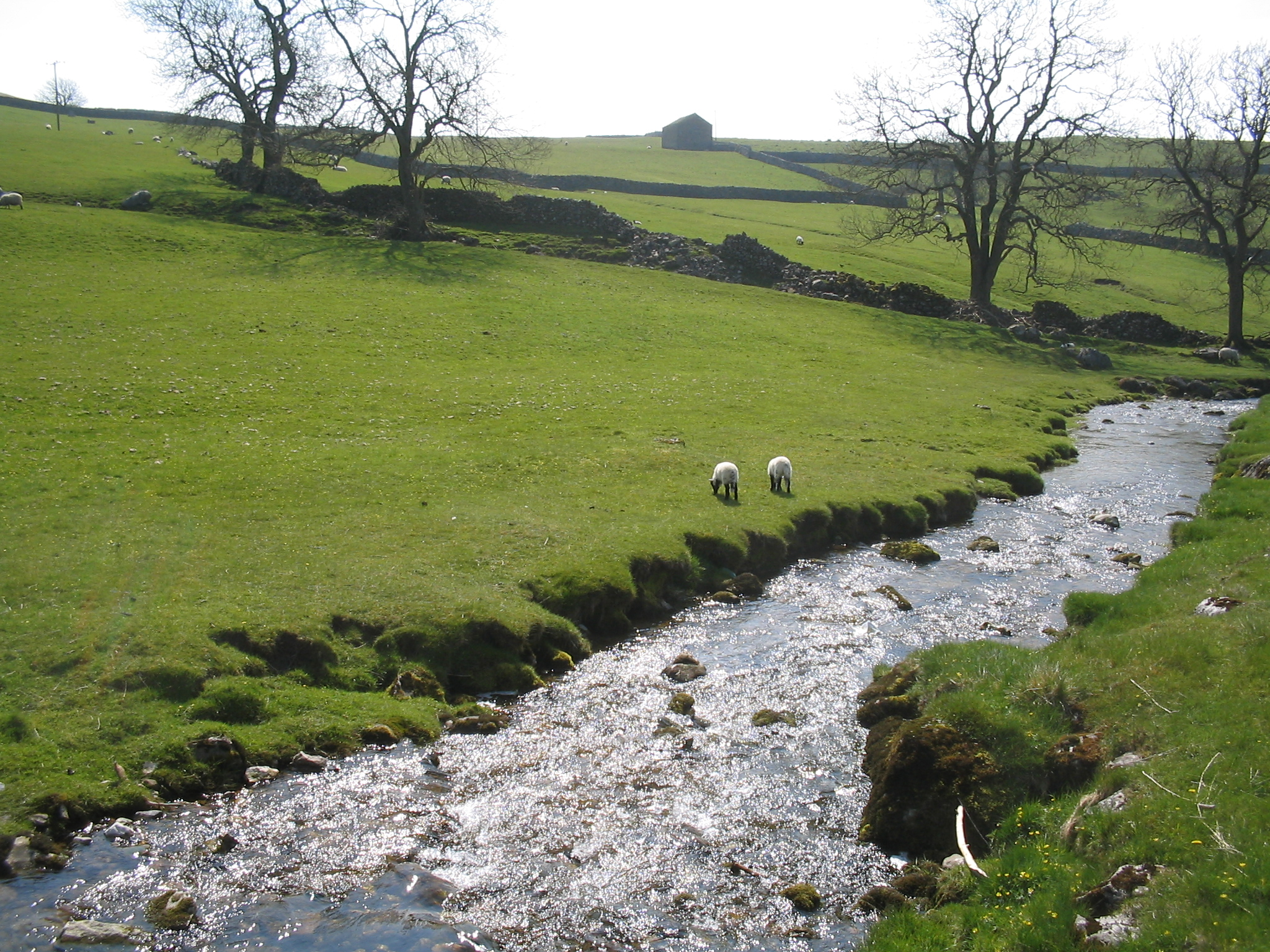 http://upload.wikimedia.org/wikipedia/commons/2/23/Gordale_Beck.jpg