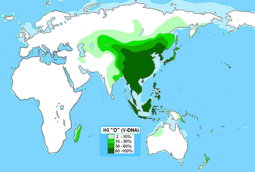 https://upload.wikimedia.org/wikipedia/commons/2/23/Haplogrupo_O_(ADN-Y)_edit.png