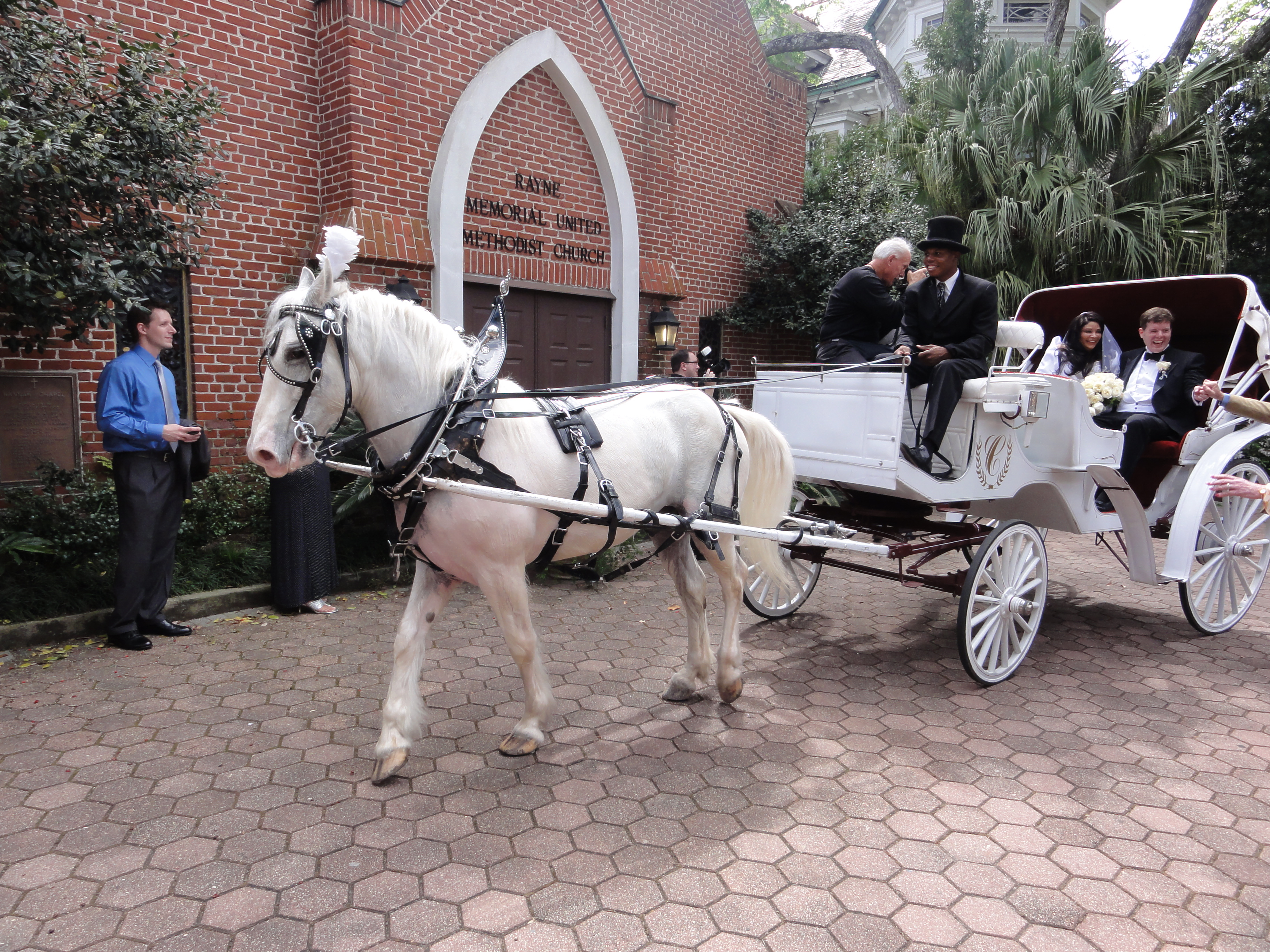 ファイル horse drawn wedding carriage new orleans jpg wikipedia