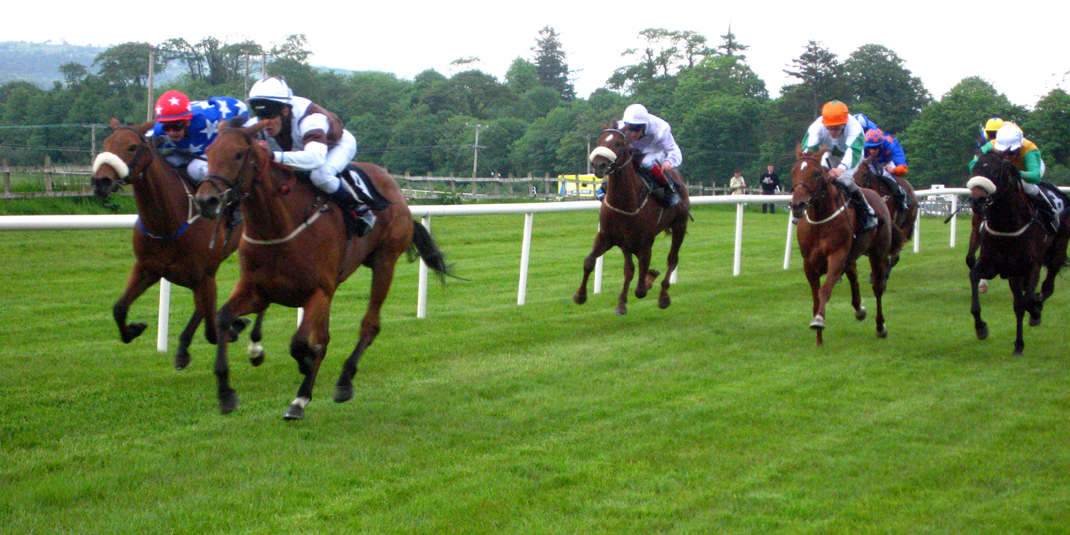 A look at some of the best horse racing tipsters on the