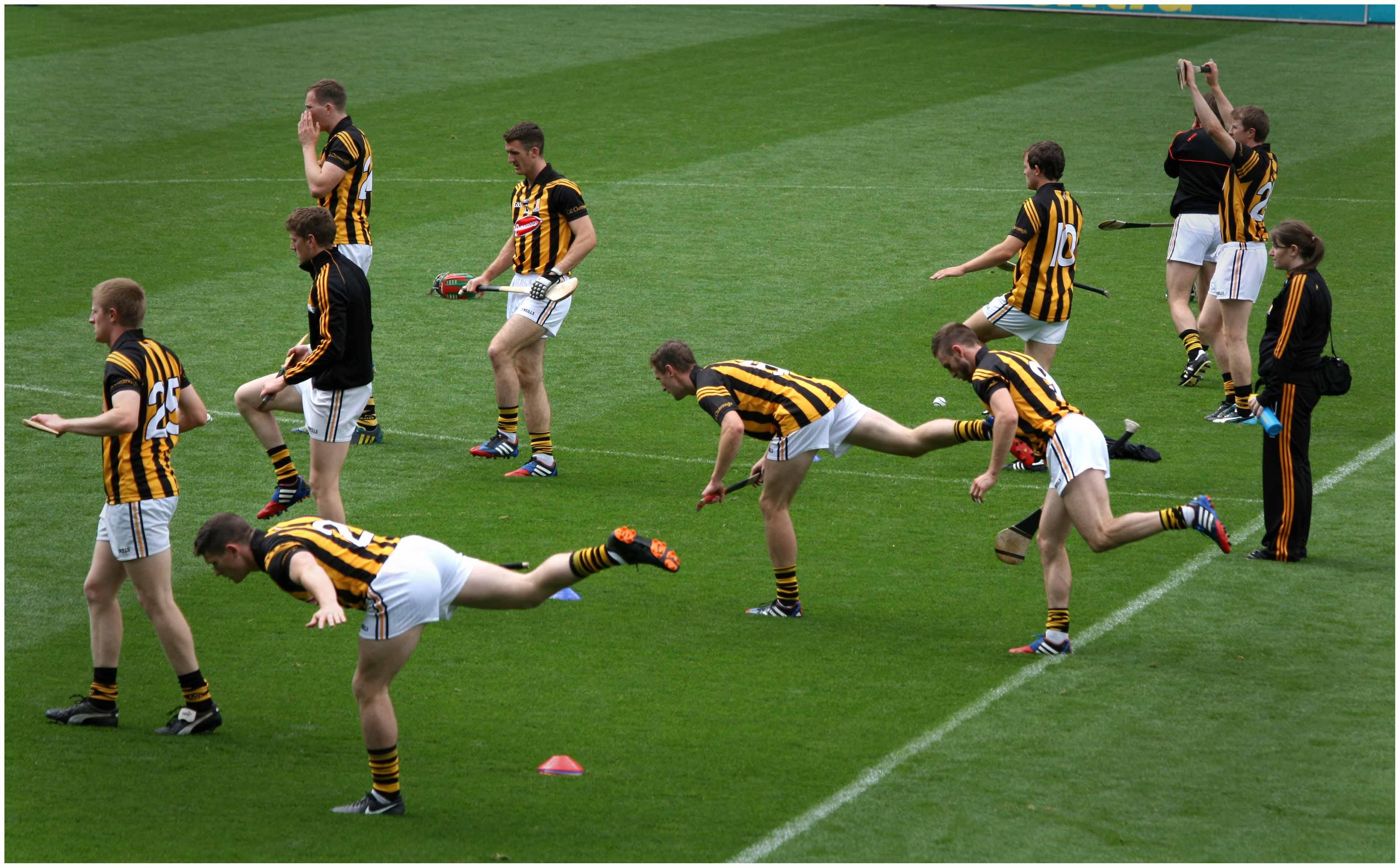 Image result for kilkenny hurlers
