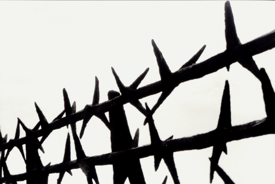 File:Mauthausen-Barbed wire memorial.jpg - Wikimedia Commons