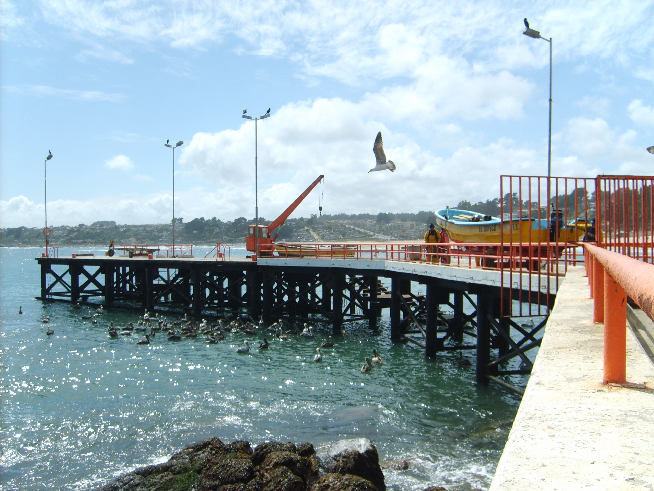 A basic pier located on sparkling blue waters