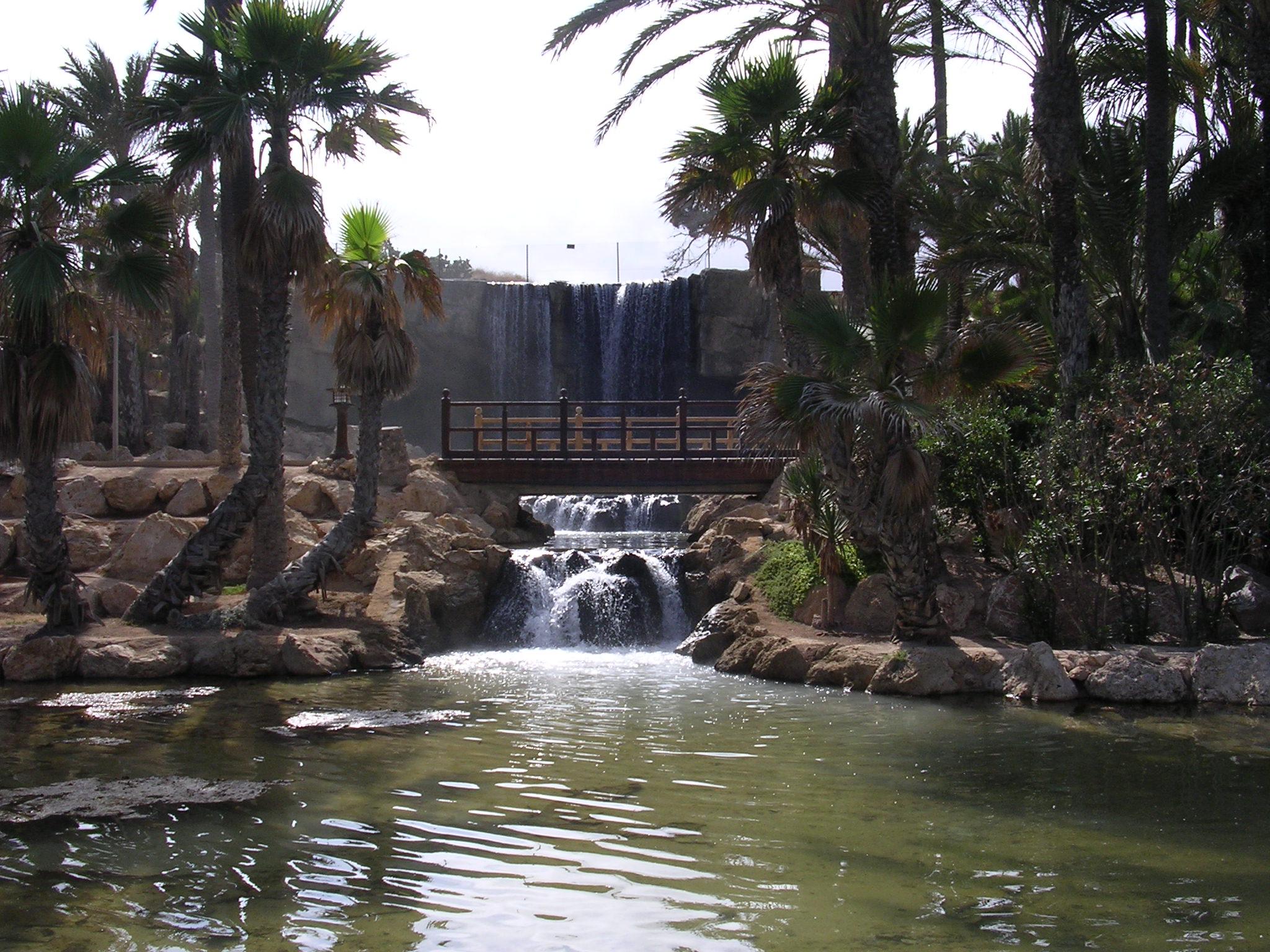 Resultado de imagen de parque el palmeral alicante