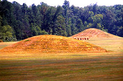 Pharr Mounds.jpg