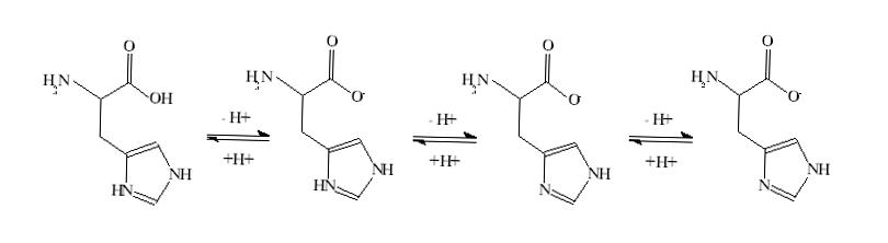Dresden enkelt molekyl