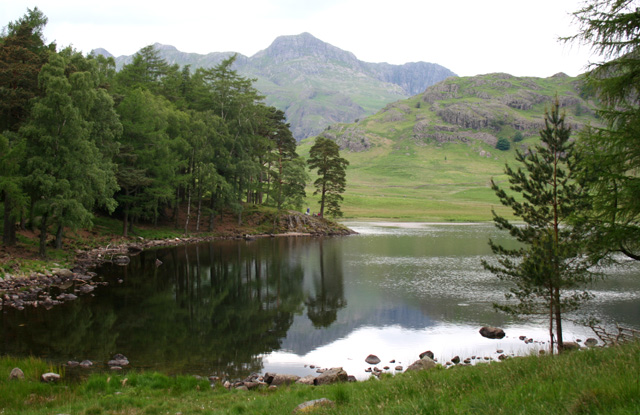 Reflections in Blea Tarn - geograph.org.uk - 838936
