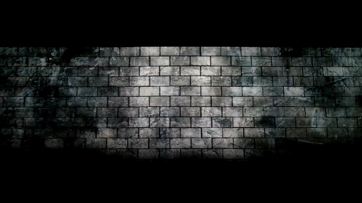 Loneliness And Totalitarianism In The Wall Political Analysis Of
