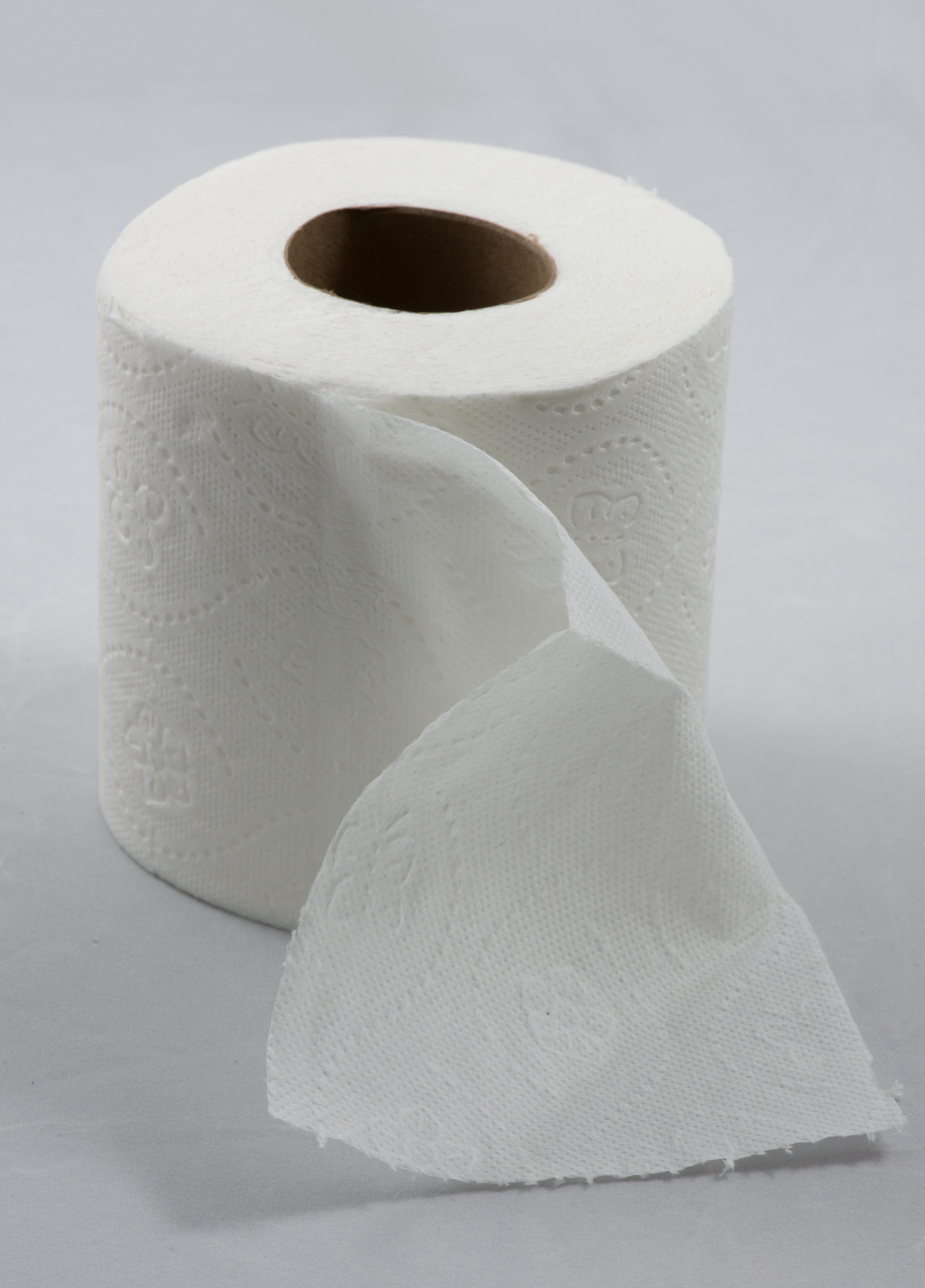 Toilet Paper Roll Art For Kids