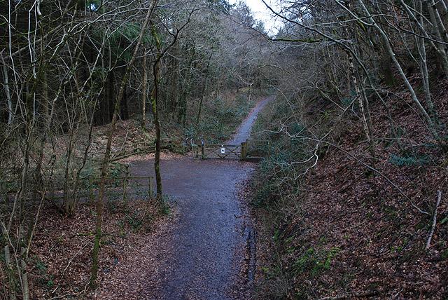 The Ystwyth Trail near Pen-rhiw - geograph.org.uk - 1771790