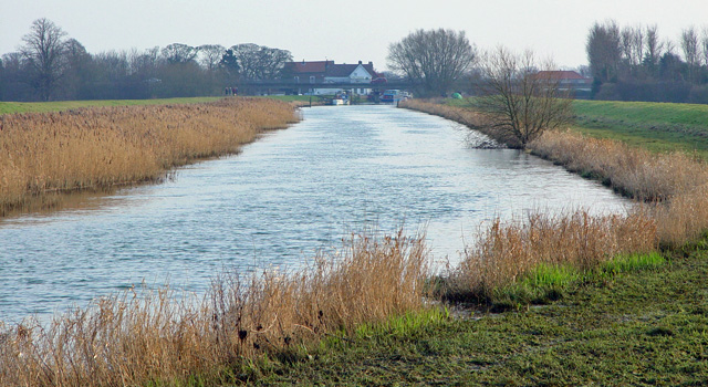 The river Hull to Tickton - geograph.org.uk - 766832