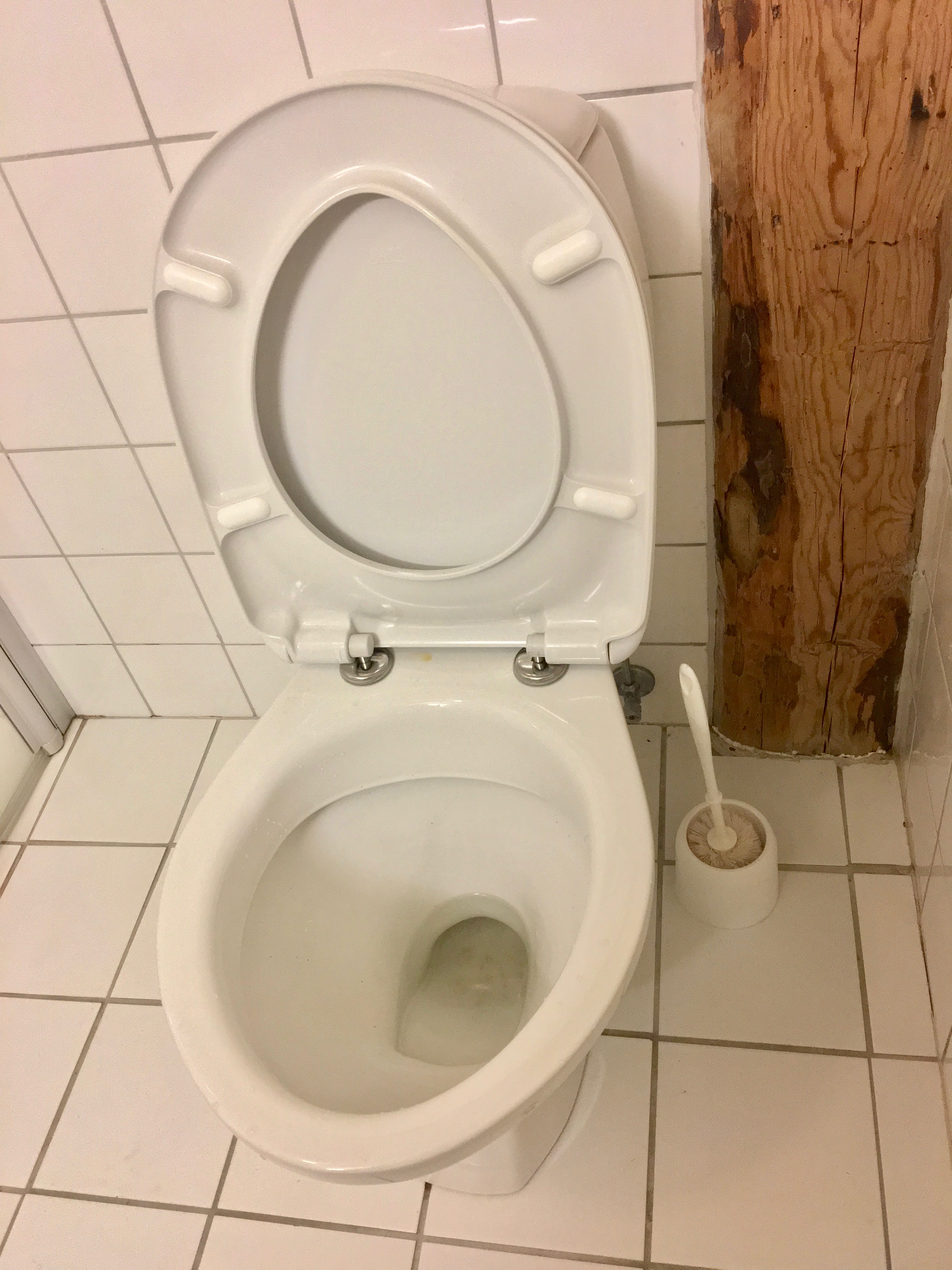 File:Toilet, wall and floor tiles, and a toilet brush in a bathroom ...