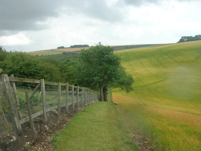 Wolds Way, Camp Dale - geograph.org.uk - 1401479