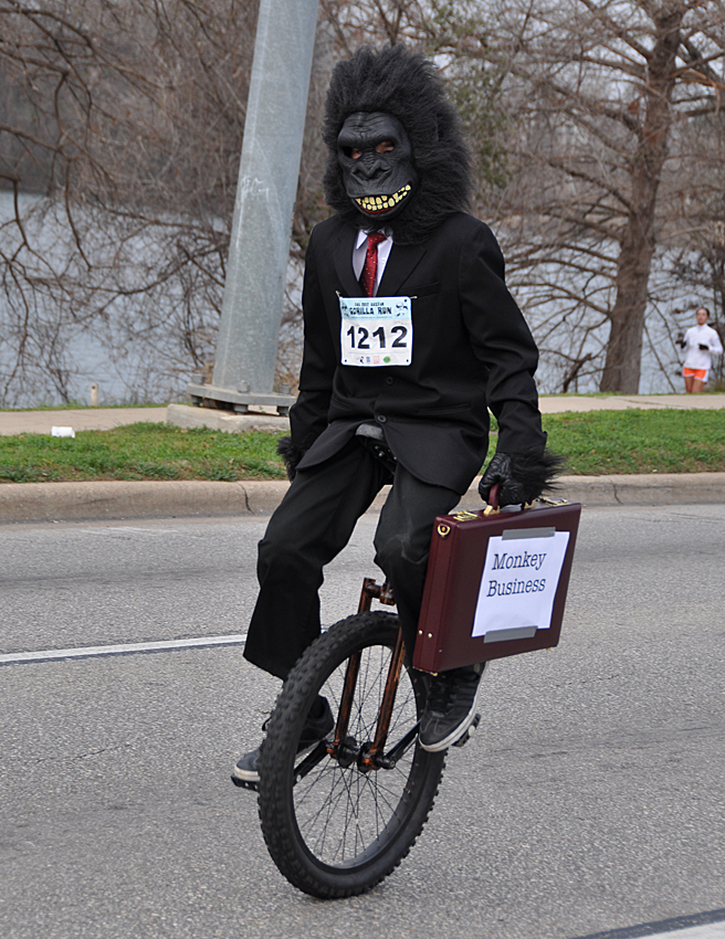 gorilla on a unicycle