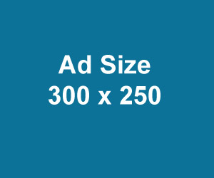 Medium Rectangle size Ad 300x250