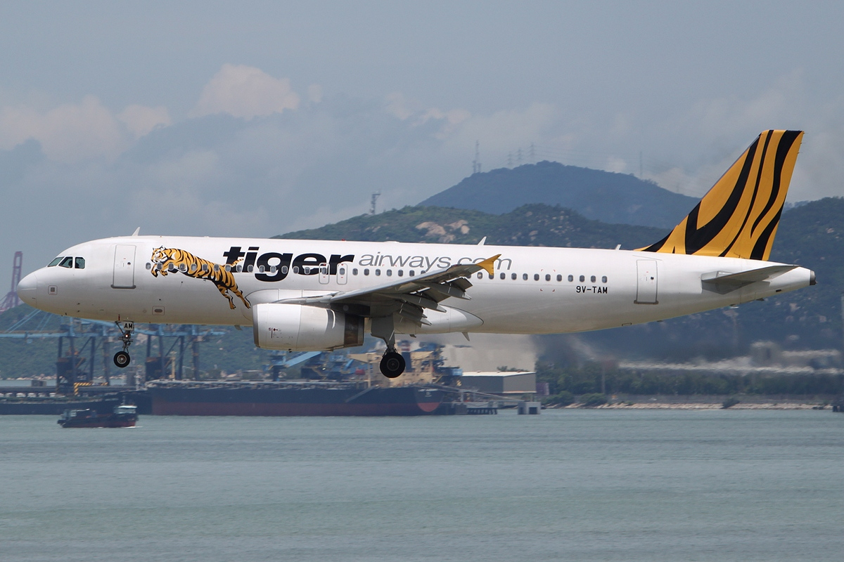 political factor in tiger airways Tiger airways marketing essay political forces are one of the most important factors for budget tiger woods when you think of the most popular icons in.