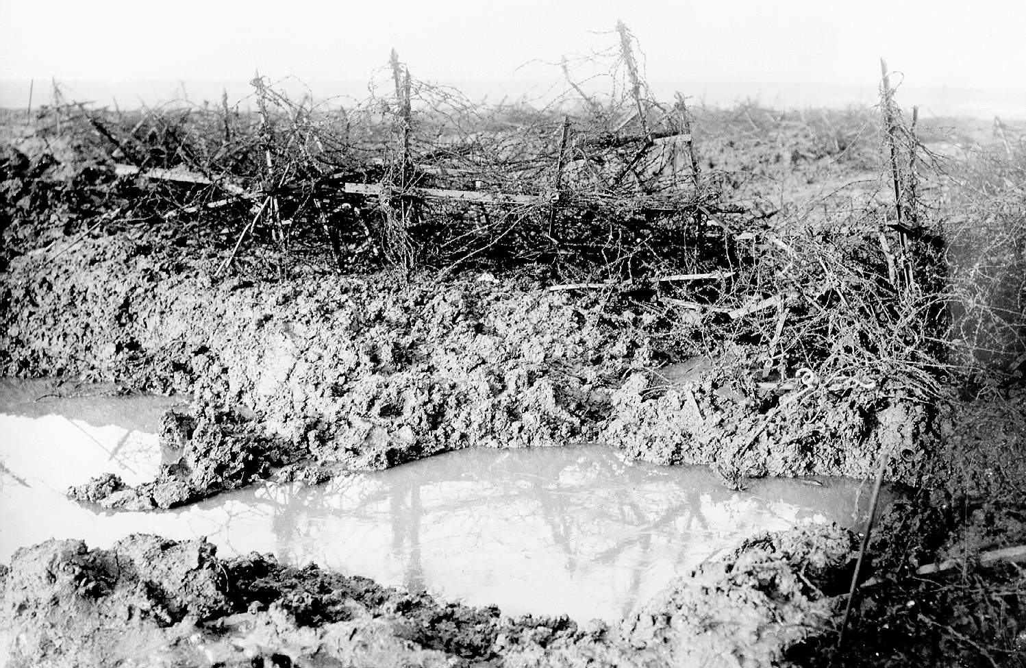Barbed wire at Beaumont Hamel.jpg
