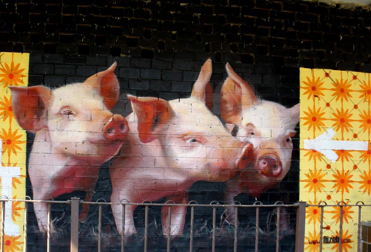 Pigs graffiti