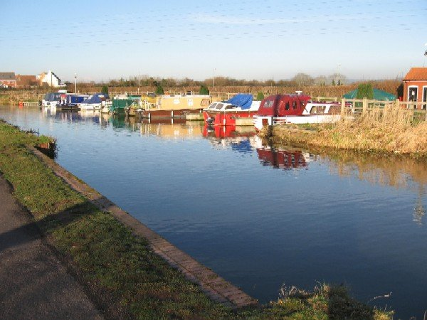 Bridgwater and Taunton Canal - geograph.org.uk - 600019