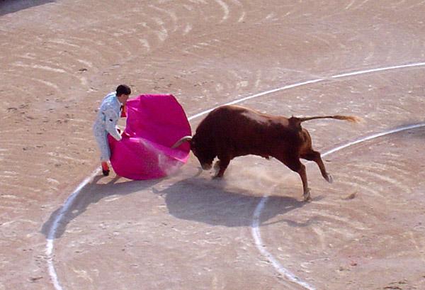 img https://upload.wikimedia.org/wikipedia/commons/2/24/Bull_attacks_matador.jpg /img