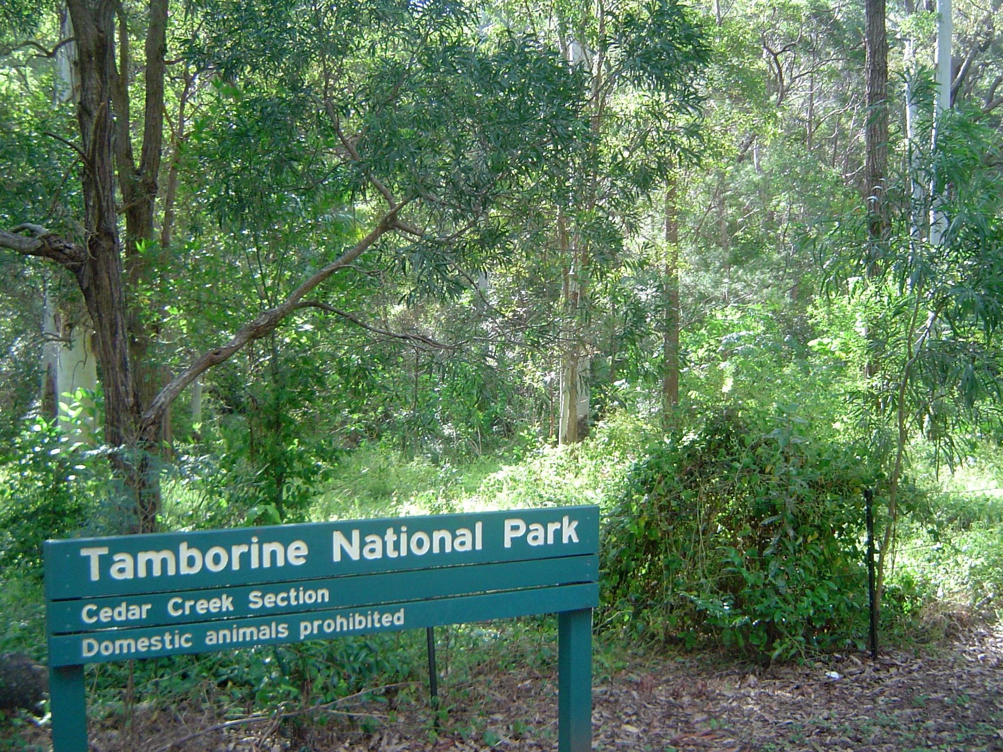 Tamborine National Park Wiki Everipedia