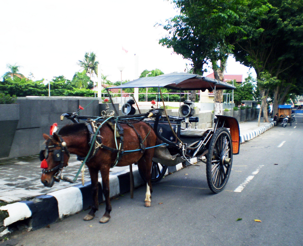 Delman Bahasa Indonesia Ensiklopedia Bebas