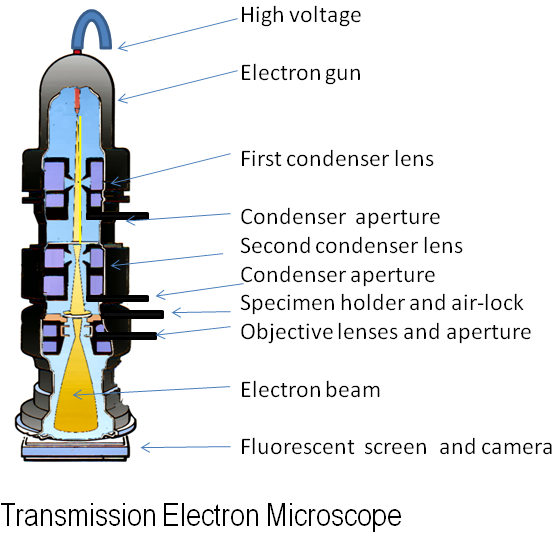 File:Electron Microscope.png