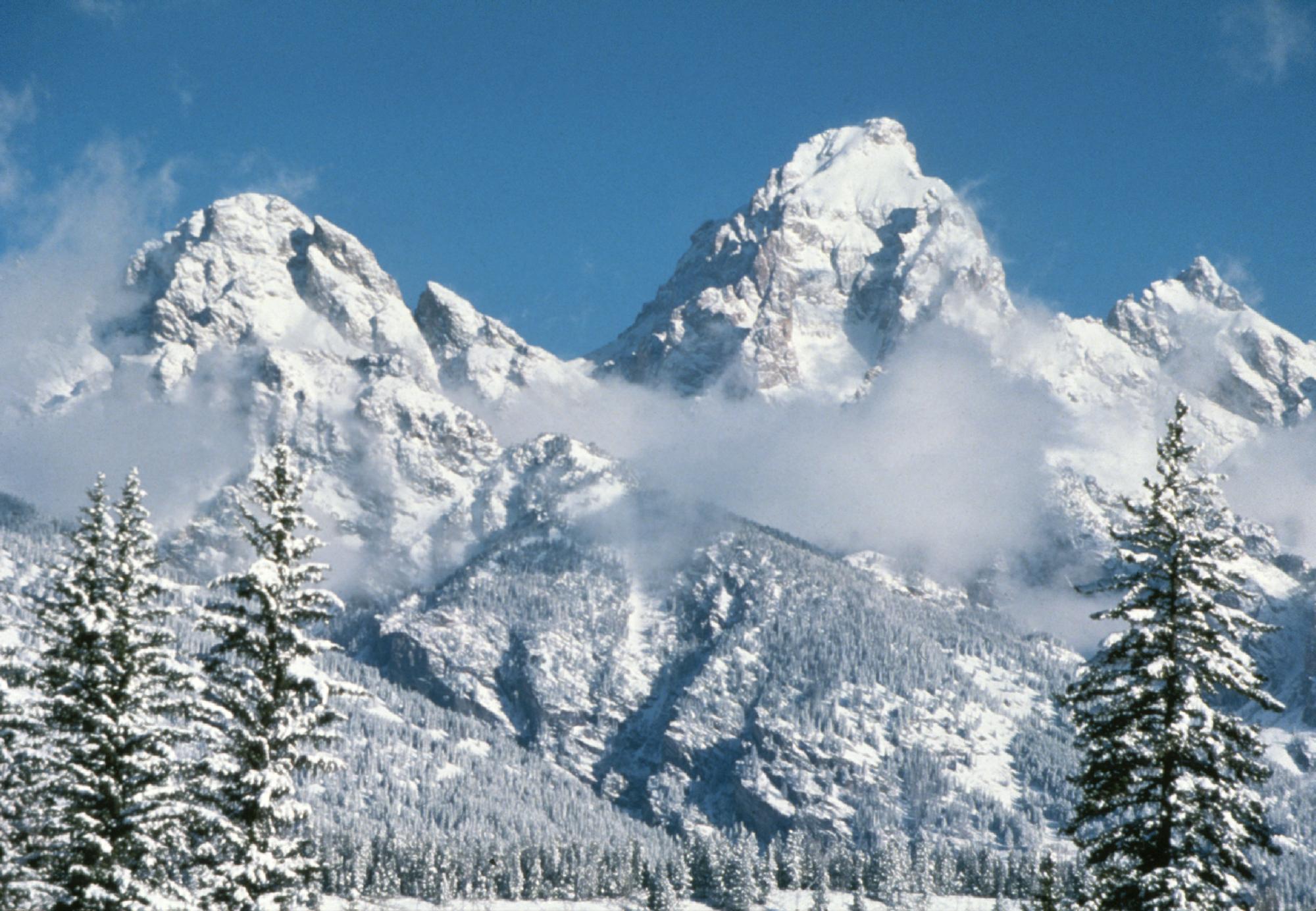 Image result for winter in grand teton national park