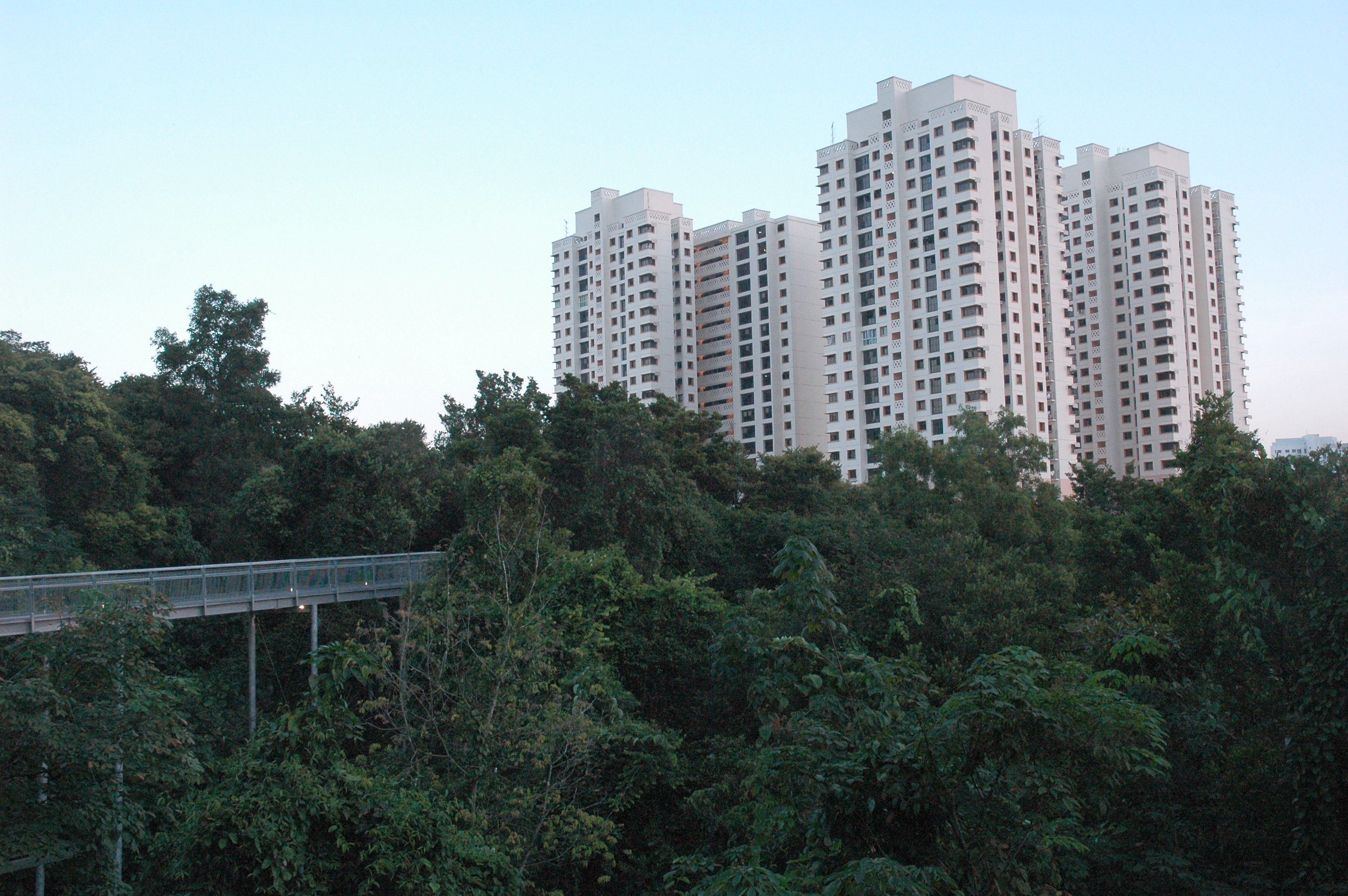 File High Rise Housing Seen From The Elevated Walkway Of