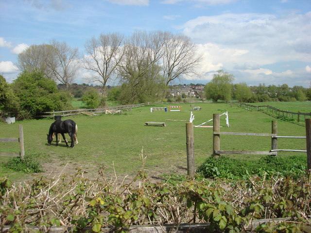 File:Horses next to Brundon Lane - geograph.org.uk - 785691.jpg