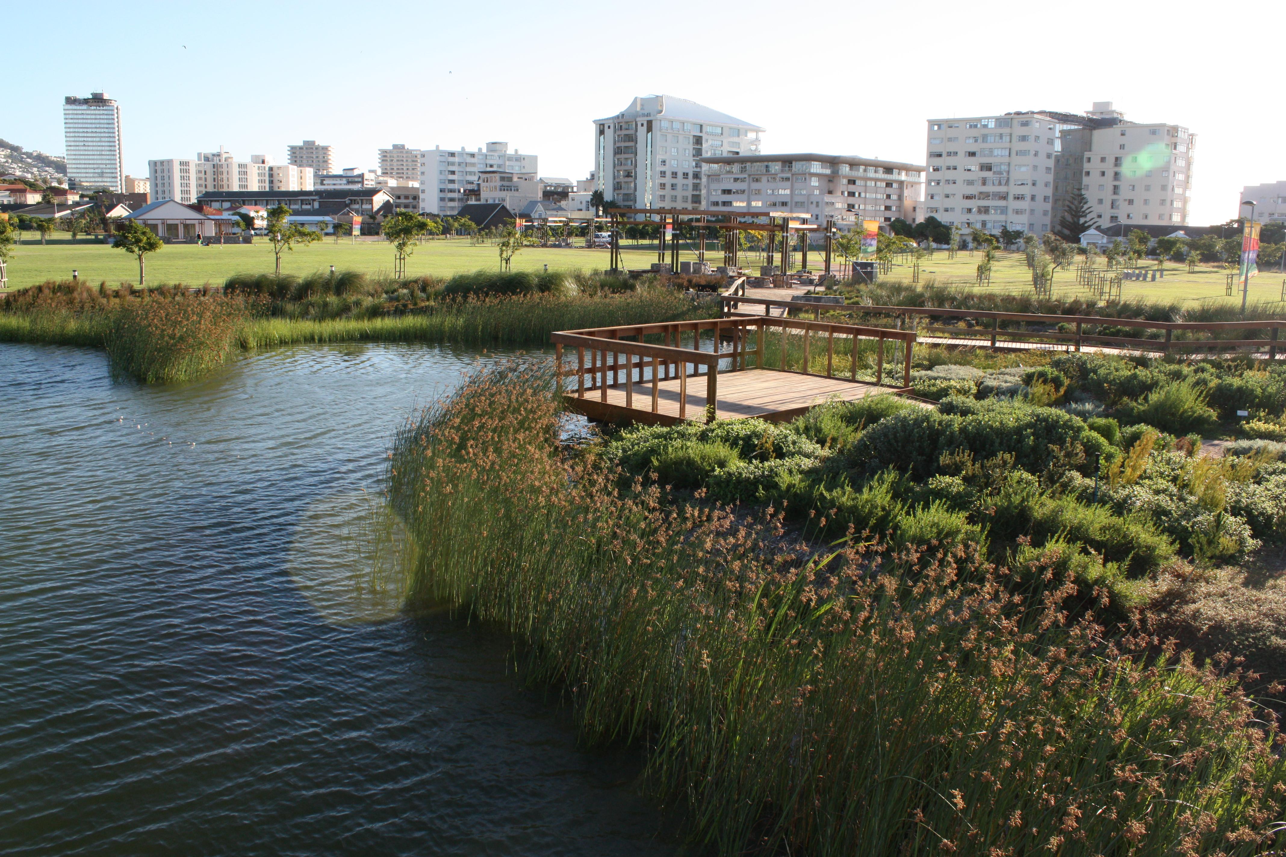 File:Indigenous Wetland Garden - Cape Town BSG.jpg ...