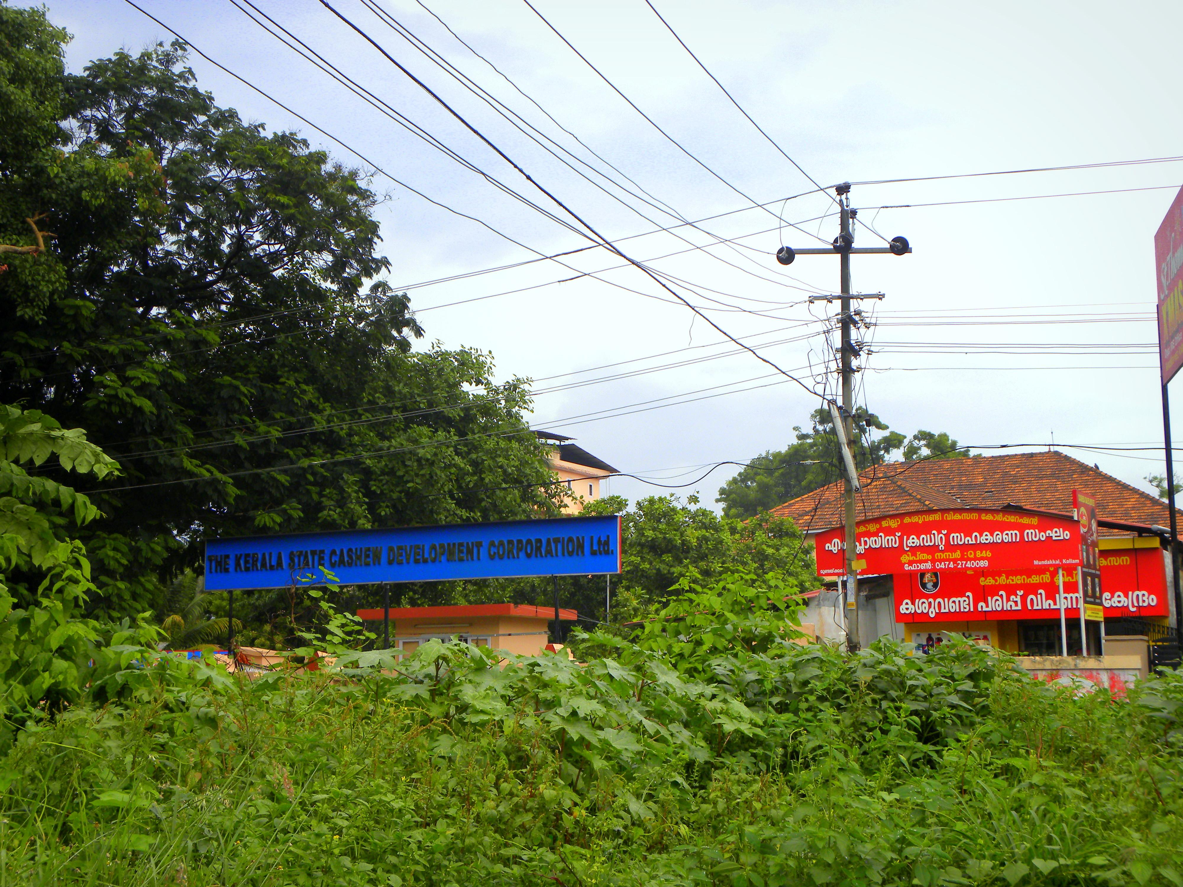 Kerala State Cashew Development Corporation Limited Wikiwand