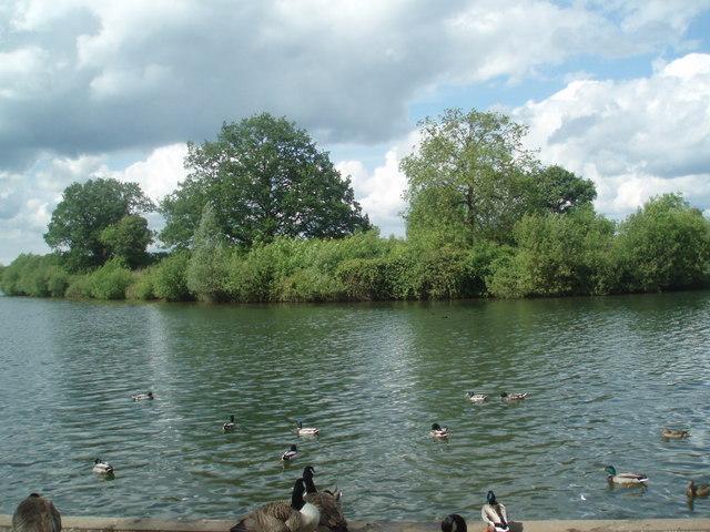 Lake at Dinton Pastures - geograph.org.uk - 1314627