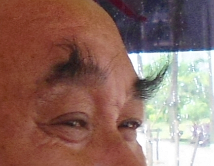 File:Long eyebrows on a Chinese man.jpg - Wikimedia Commons