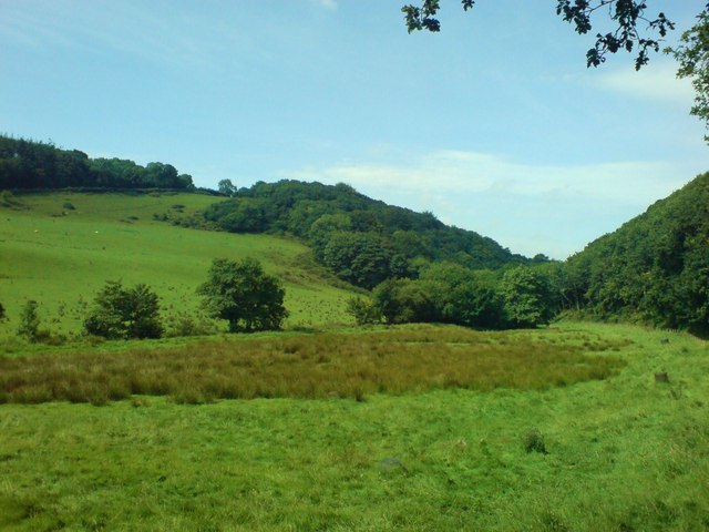 Lush river valley - geograph.org.uk - 902793
