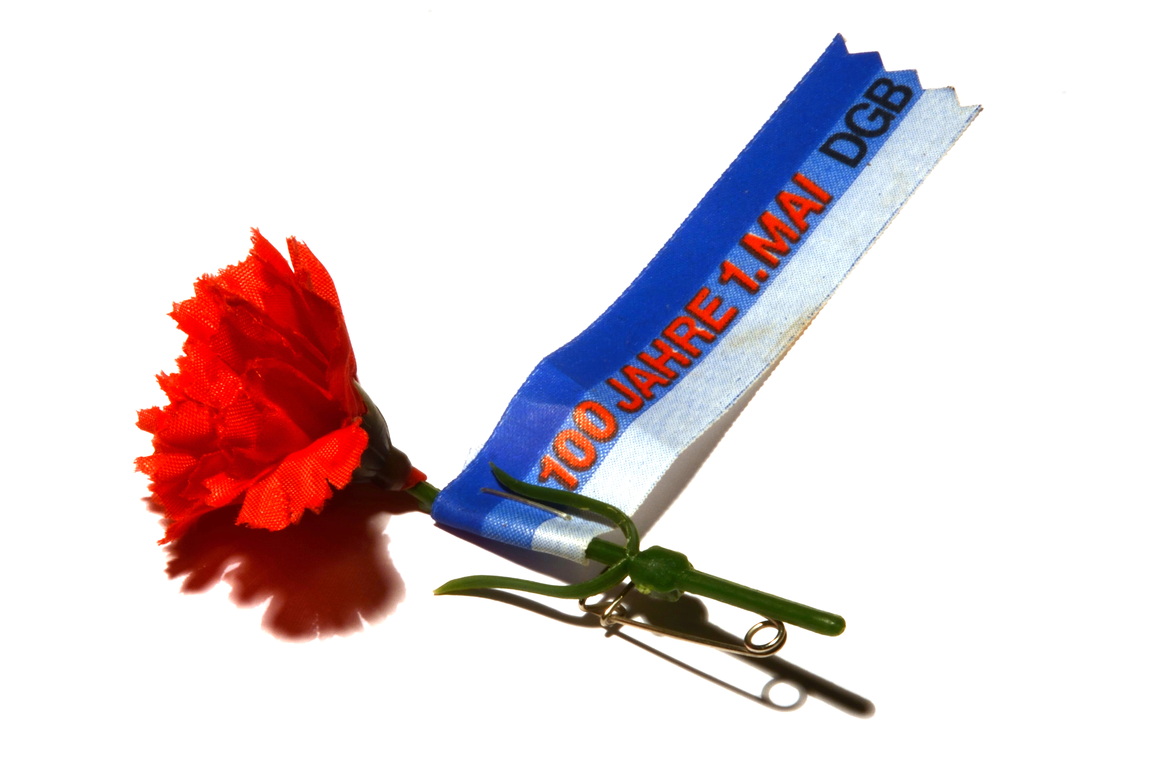 A red carnation with a ribbon for a celebration of the first of May