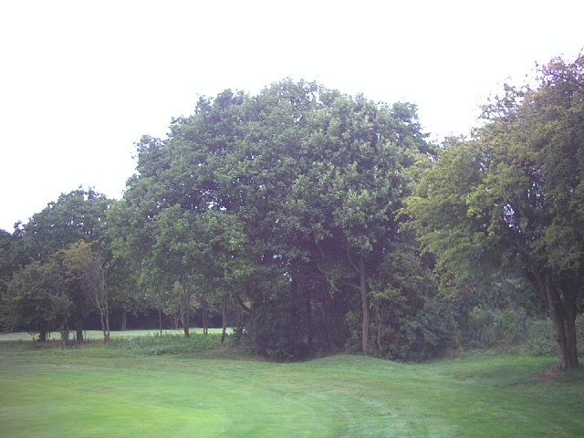 One of the tumuli on Banstead Downs. - geograph.org.uk - 53277