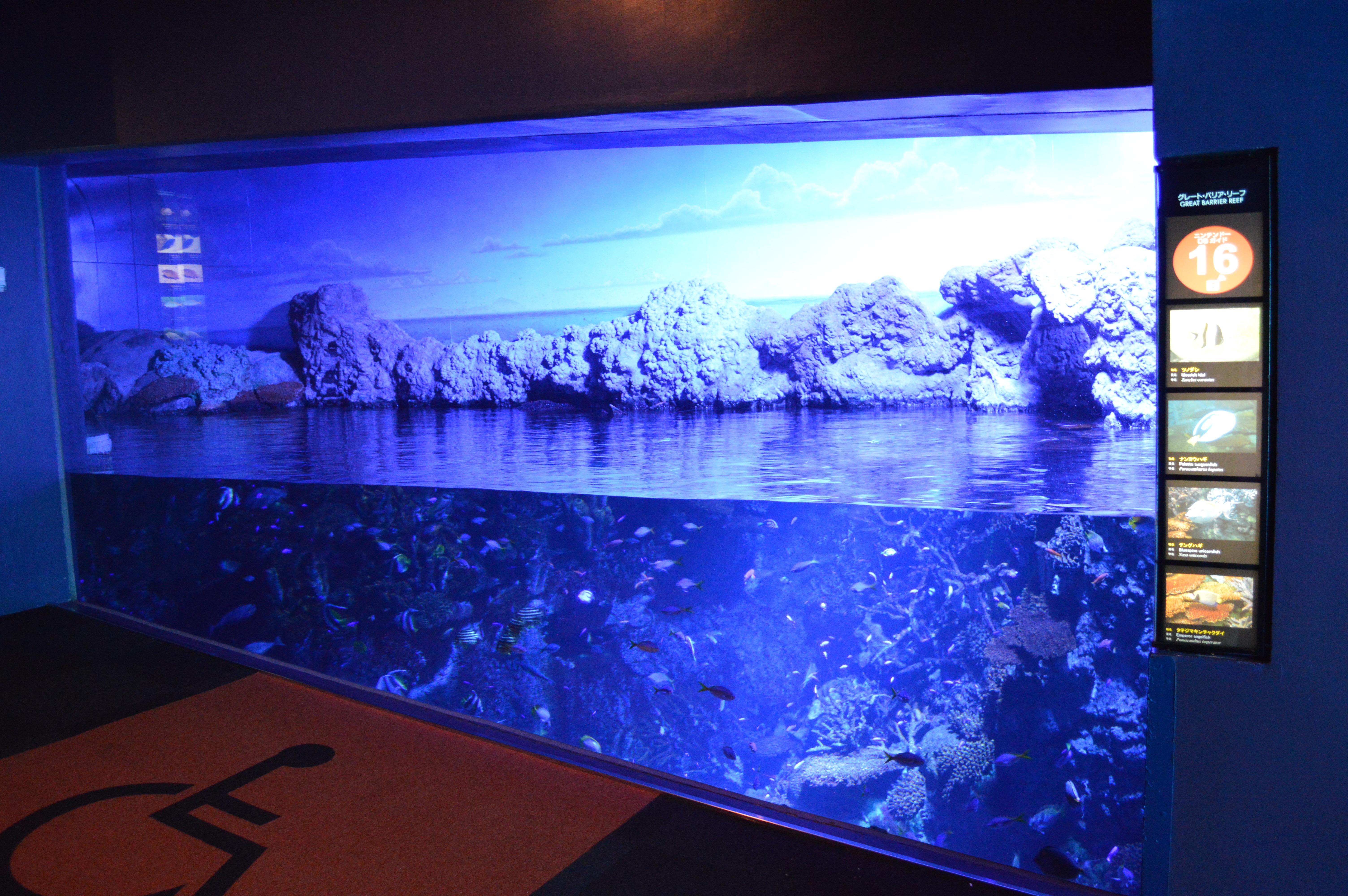 File:Osaka Aquarium Kaiyukan 2013-09C.JPG - Wikimedia Commons