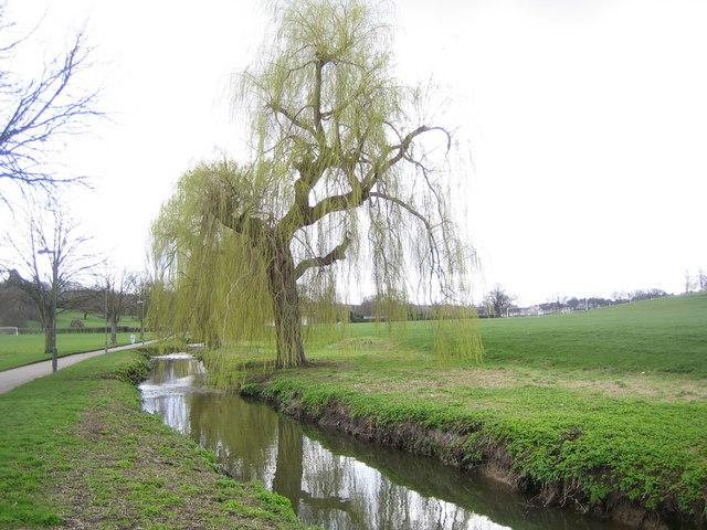 Pymme's Brook in Oak Hill Park, East Barnet - geograph.org.uk - 151014