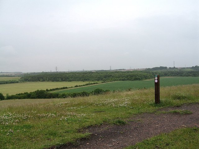 Rising Sun Country Park - geograph.org.uk - 952812