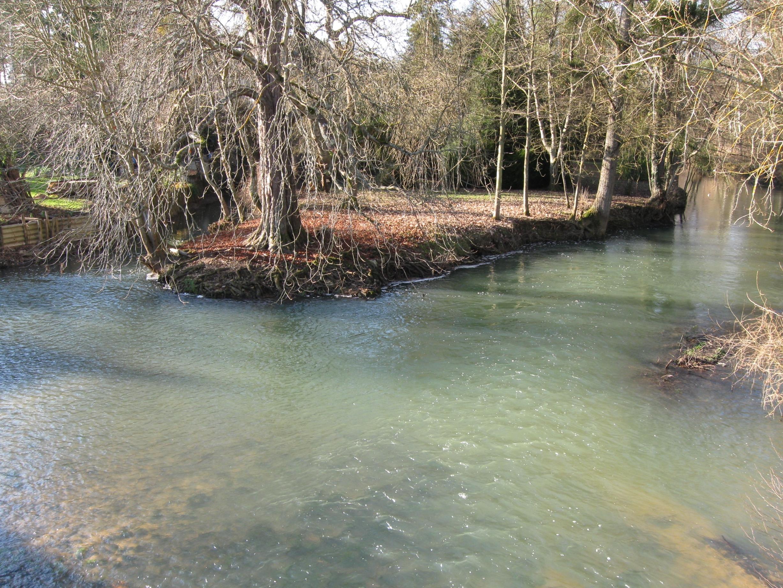 Ouanne (rivière)