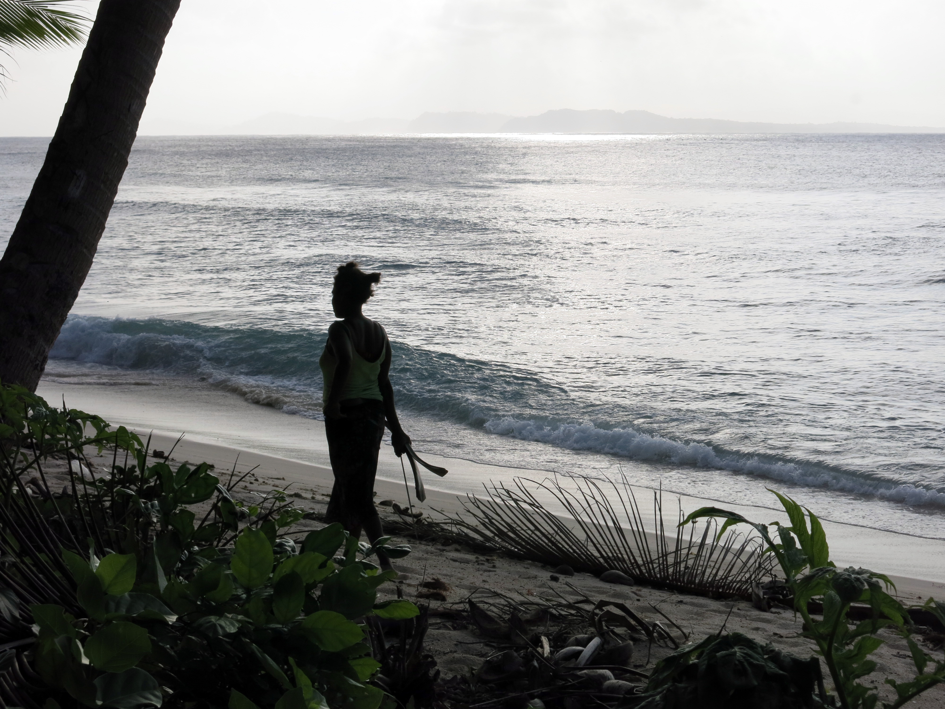 File Silhouette Of A Woman Walking Along The Beach Carrying Some Coconut Tree Fronds