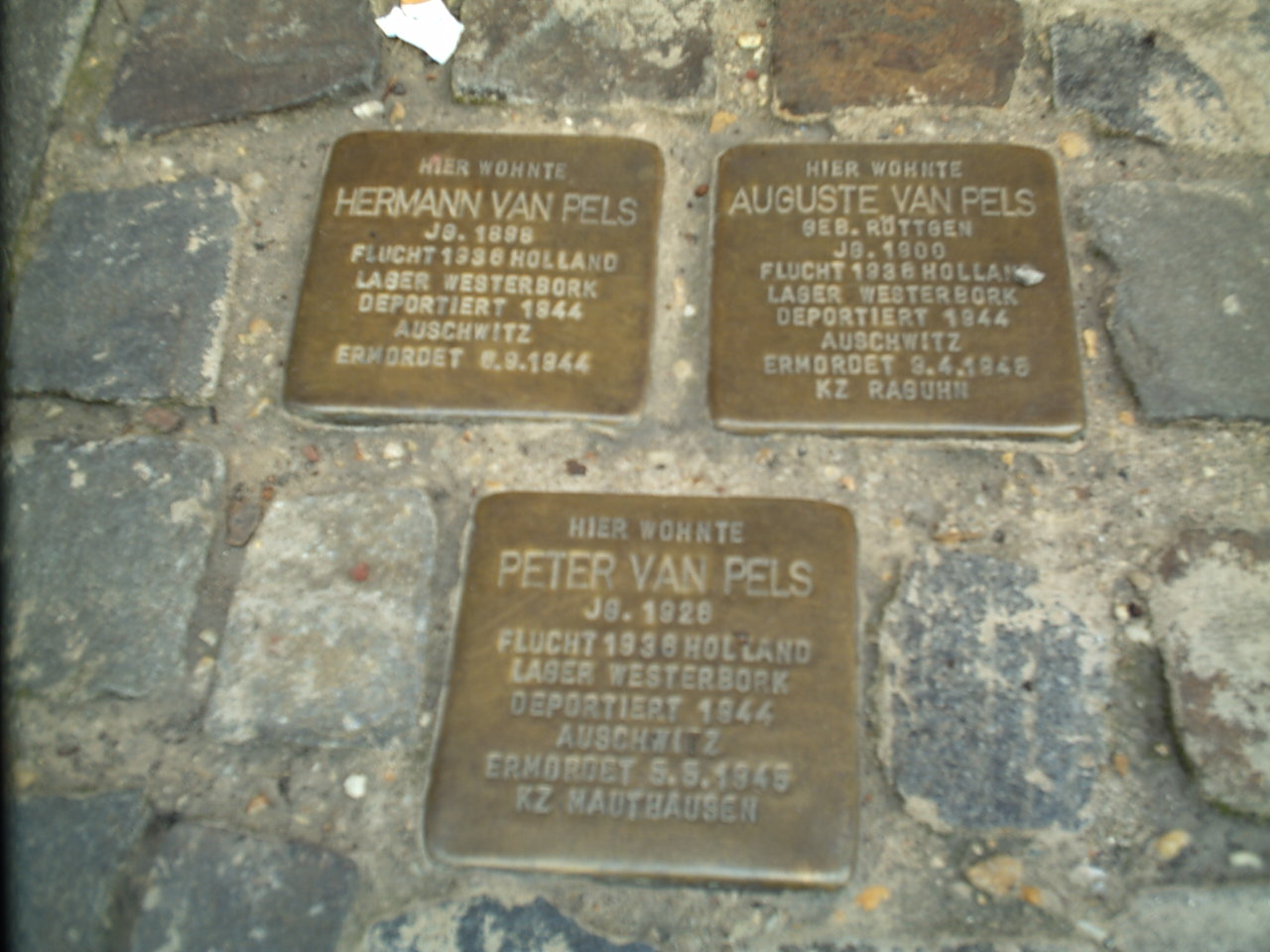https://upload.wikimedia.org/wikipedia/commons/2/24/StolpersteinOS01.JPG