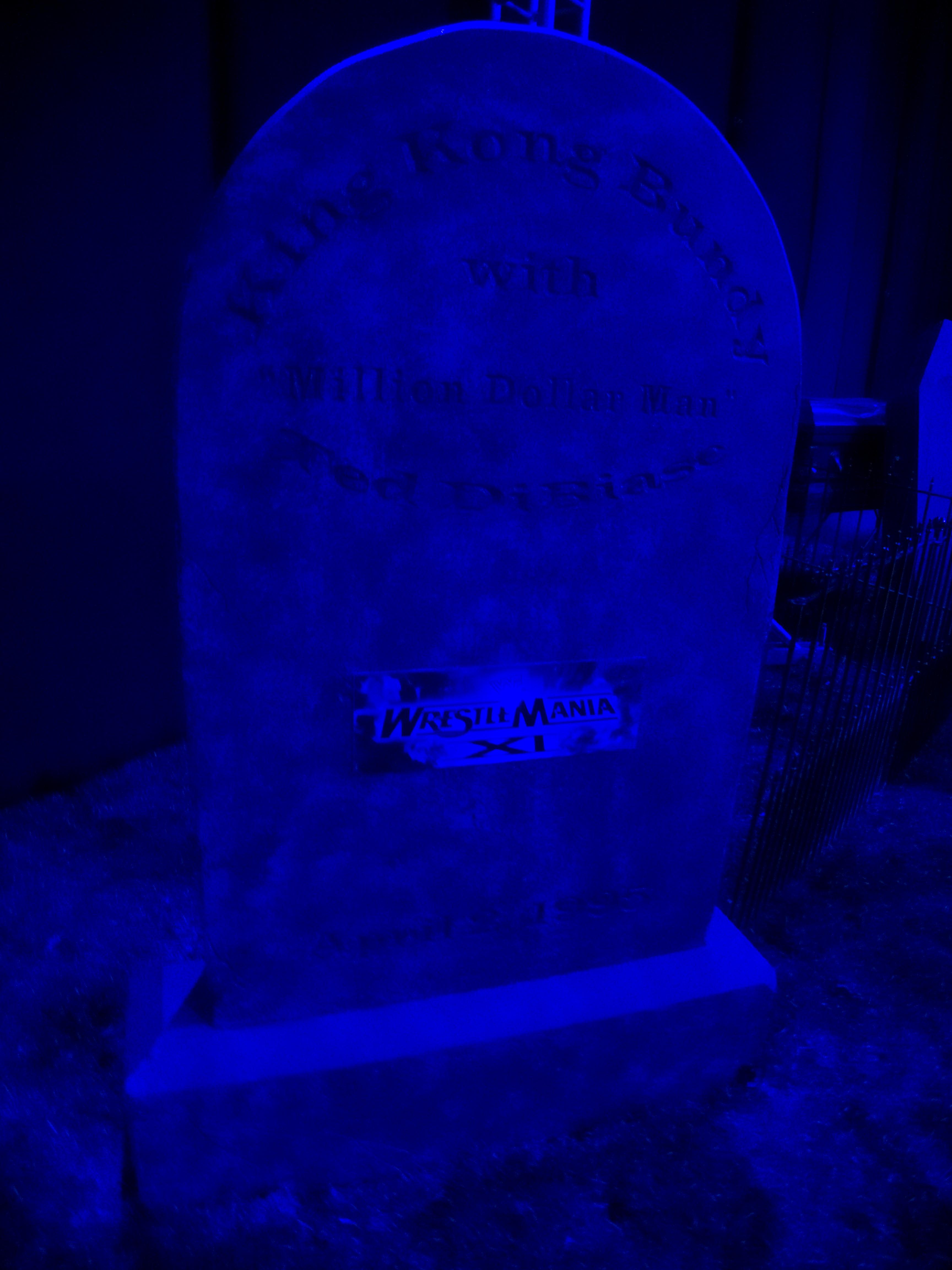 filethe undertakers graveyard king kong bundyjpg