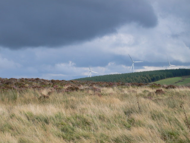 File:Tir Mostyn Wind Farm from Llyn Brenig - geograph.org.uk - 982504.jpg